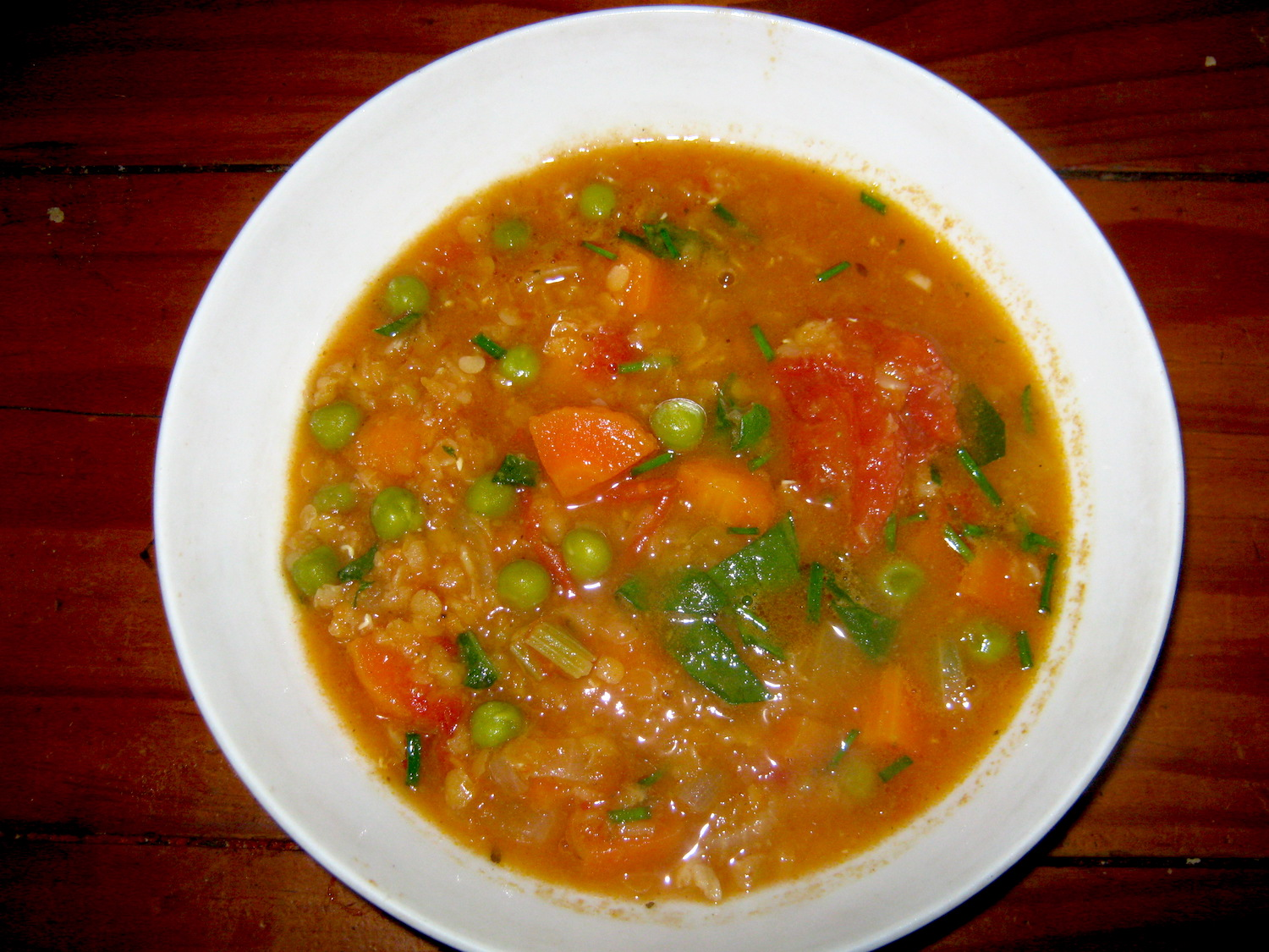 Vegan Lentil tomato soup in a white bowl