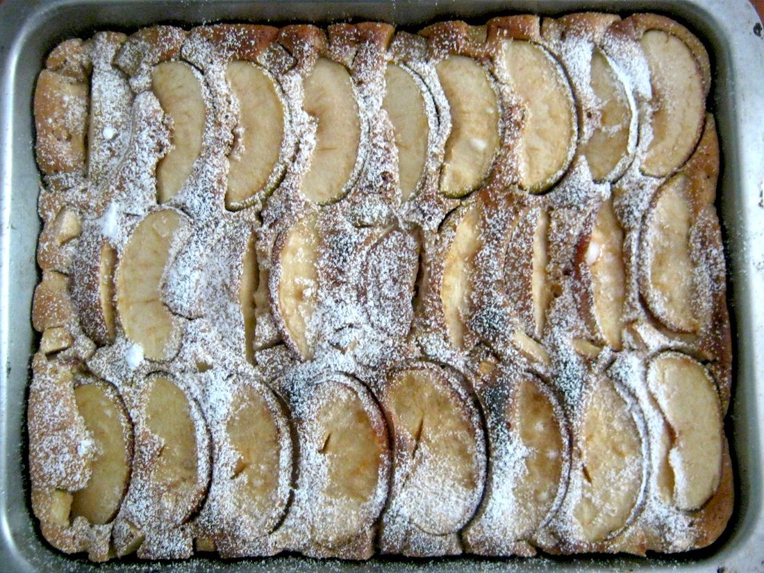 Apple cake in baking tray