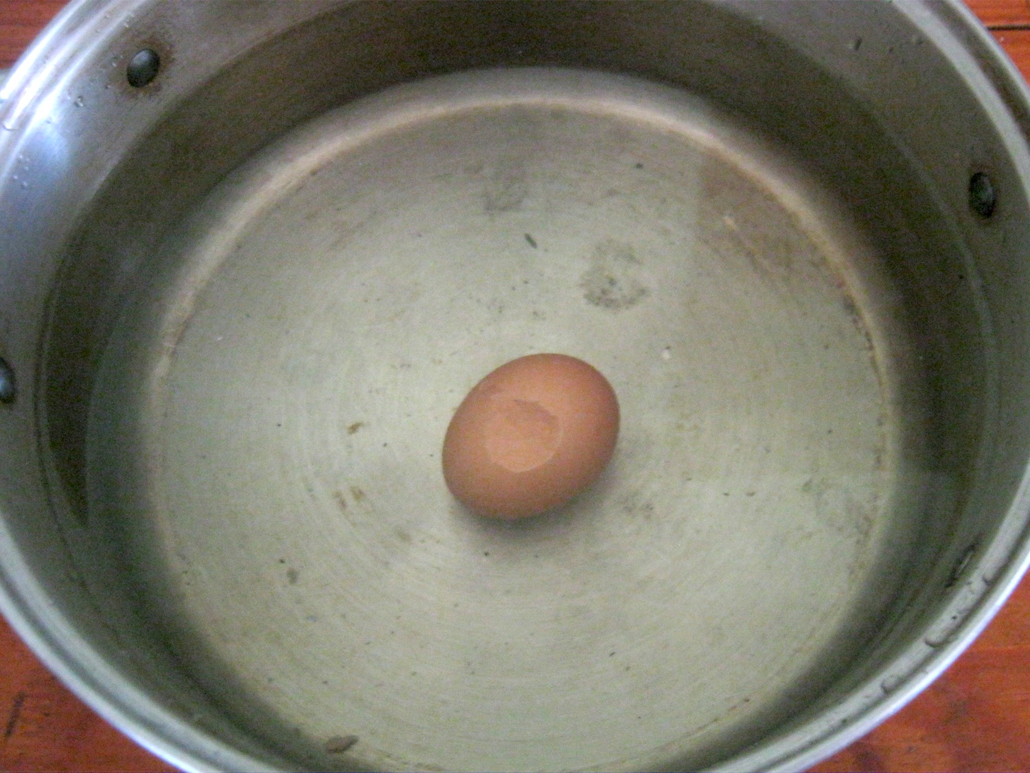 Boiled egg with cracked skin in pot with cold water
