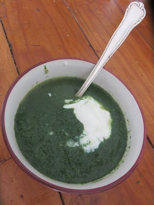 Carolines - Cape Green Forager's Soup with fresh nettle leaves and sorrel